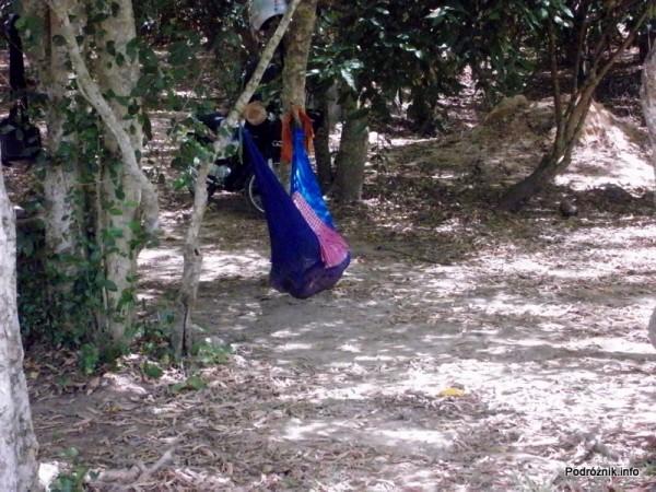 """Kambodża - Siem Reap - maj 2012 - Angkor Wat - bobas w """"kołysce"""""""