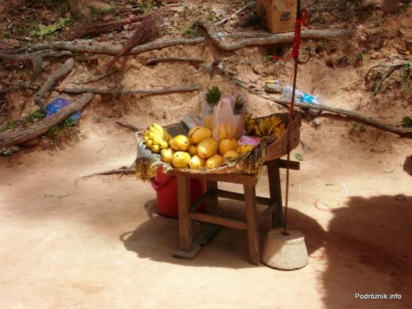 Kambodża - Siem Reap - maj 2012 - Angkor - kosz lokalnych owoców