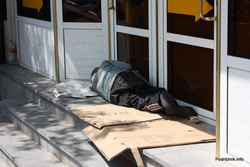 Armenia - Erewan - lipiec 2012 - bezdomny