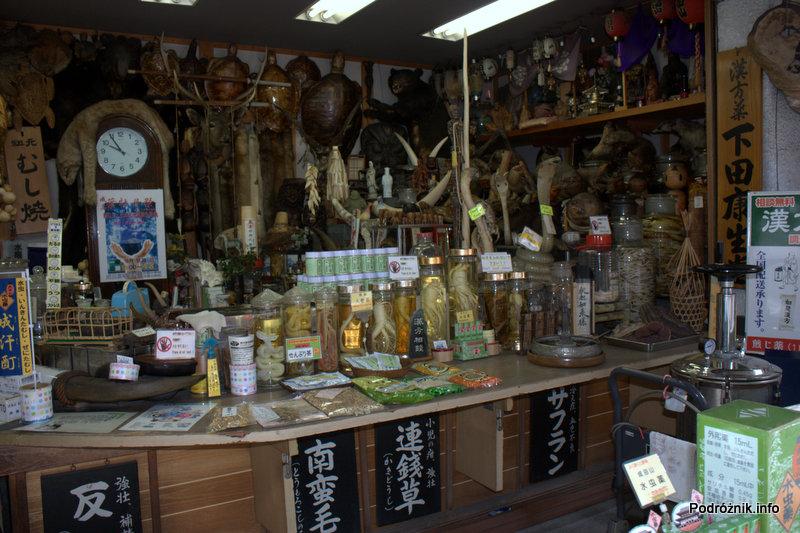 Japonia - Narita - preparowane rzadkie rośliny i zwierzęta - sierpień 2012