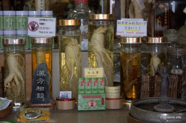 Japonia - Narita - żeń-szeń w słojach - sierpień 2012