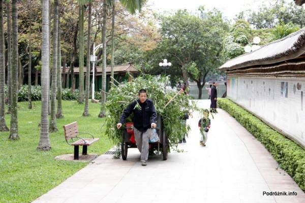 Chiny - Shenzhen - park przy stacji metra Tongxinling - ogrodnik ciągnący wóz ze ściętymi gałęziami - kwiecień 2013