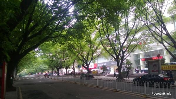 Chiny - Shenzhen - metalowe barierki oddzielające przeciwne pasy ruchu oraz drzewa przy ulicy  - kwiecień 2013