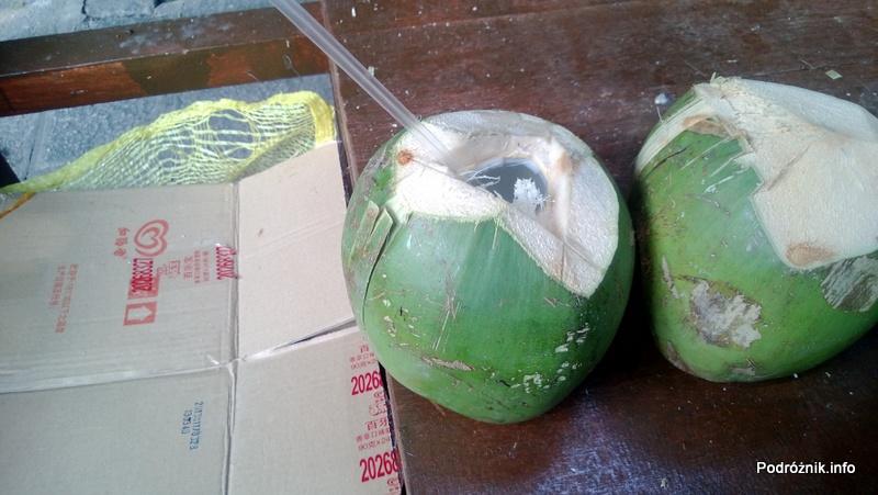 Chiny - Shenzhen - Splendid China Folk Village - zawartość kokosa gotowa do picia - kwiecień 2013