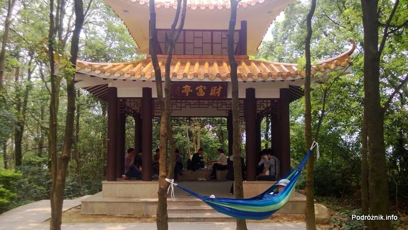 Chiny - Shenzhen - ogród botaniczny - miejsce do odpoczynku stylizowane na pagodę - kwiecień 2013