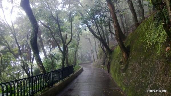 Chiny - Hongkong - Wzgórze Wiktorii (The Peak) - ścieżka niedaleko szczytu - kwiecień 2013