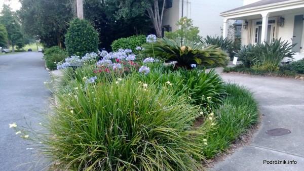 USA - Metairie - ozdobny trawnik przed domem w pobliżu jeziora Pontchartrain - czerwiec 2013