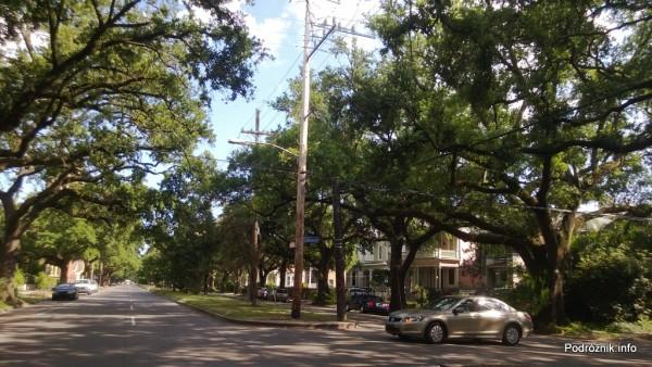 USA - Nowy Orlean - stare dęby wzdłuż Louisiana Ave - czerwiec 2013