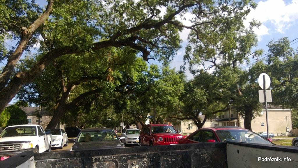 USA - Nowy Orlean - korony starych dębów nad ulicą przy Louisiana Ave - czerwiec 2013