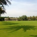 USA - Nowy Orlean - Park miejski - cienie palm na trawniku - czerwiec 2013