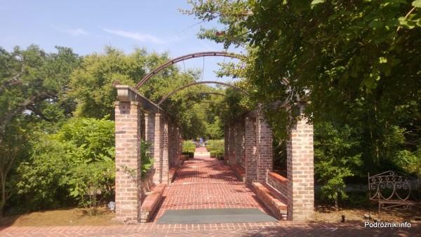 USA - Nowy Orlean - Ogród Botaniczny - pergola - czerwiec 2013