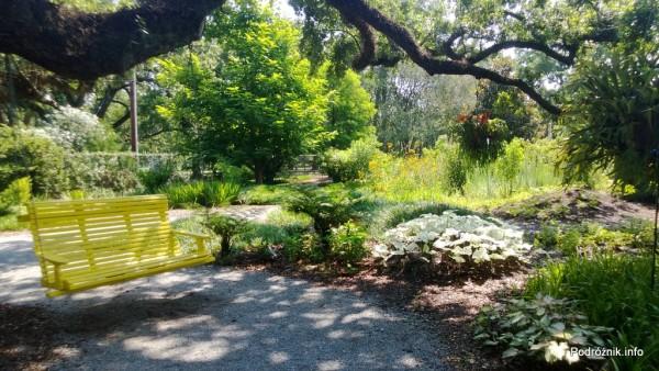 USA - Nowy Orlean - Ogród Botaniczny - ławka podwieszona na konarze dębu - czerwiec 2013