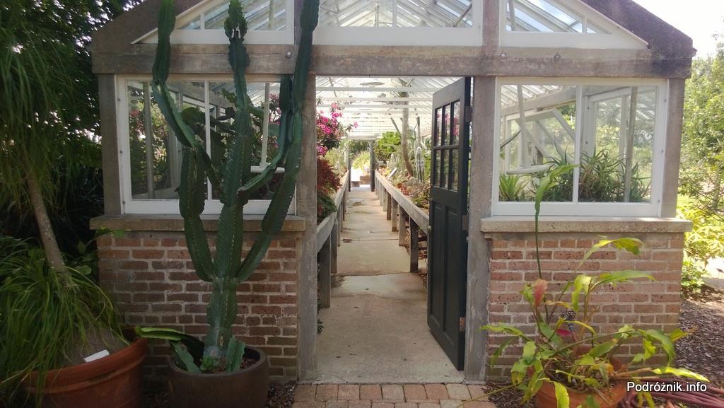 USA - Nowy Orlean - Ogród Botaniczny - przed wejściem do szklarni z kaktusami i sukulentami - czerwiec 2013