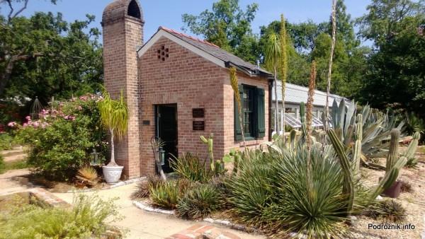 USA - Nowy Orlean - Ogród Botaniczny - duże kaktusy przed szklarnią - czerwiec 2013