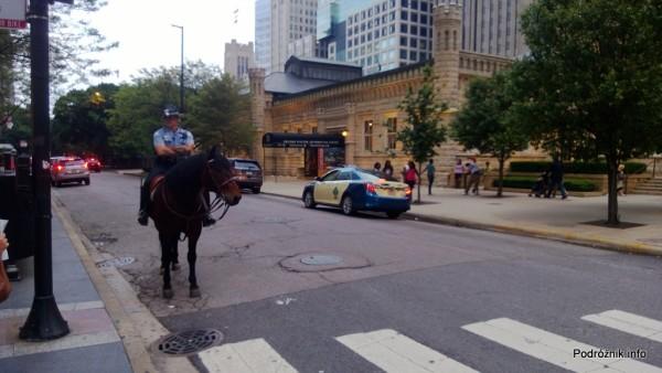 USA - Chicago - policjant na koniu - czerwiec 2013