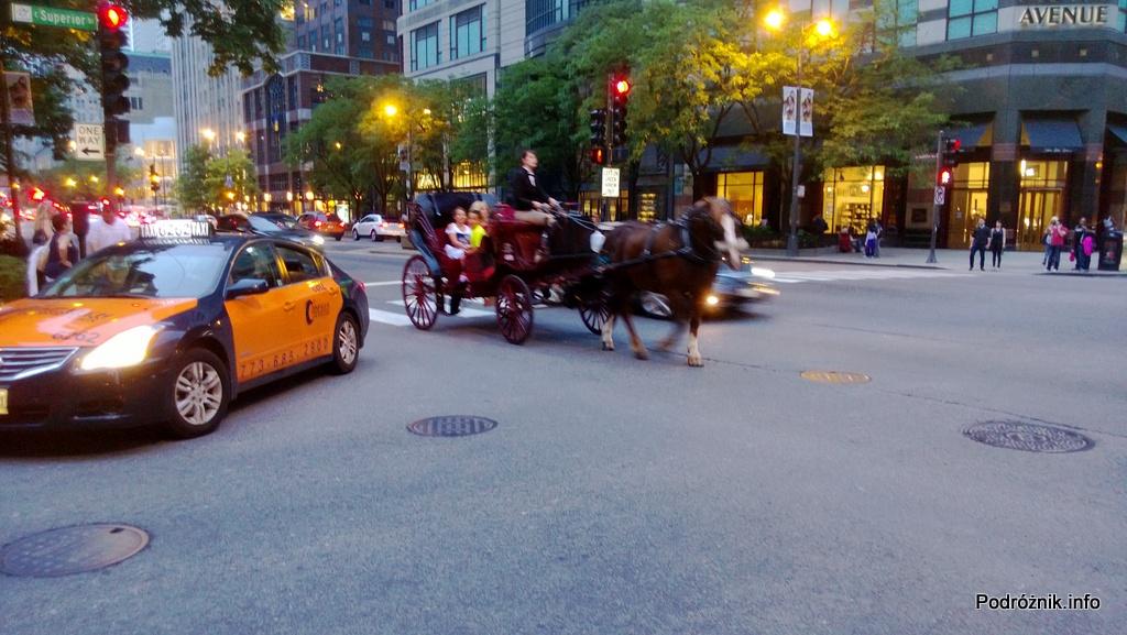 USA - Chicago - dorożka - czerwiec 2013