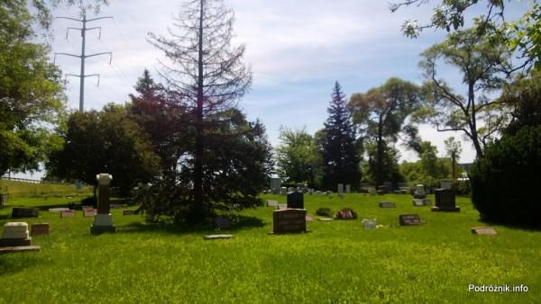 USA - przedmieścia Chicago - Cmentarz Elk Grove - czerwiec 2013