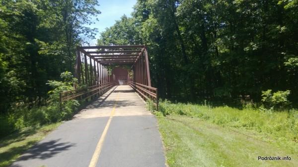 USA - przedmieścia Chicago - Busse Woods - mostek nad drogą - czerwiec 2013