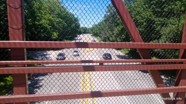 USA - przedmieścia Chicago - Busse Woods - widok przez oczka siatki z mostku nad drogą - czerwiec 2013