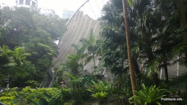 Chiny - Hongkong  - Hong Kong Park - ptaszarnia - woliera - (aviarium) - widok z  zewnątrz  - kwiecień 2013