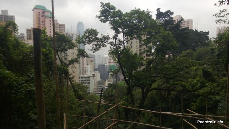 Chiny - Hongkong - Wzgórze Wiktorii - panorama na wieżowce znad bambusowego rusztowania - kwiecień 2013