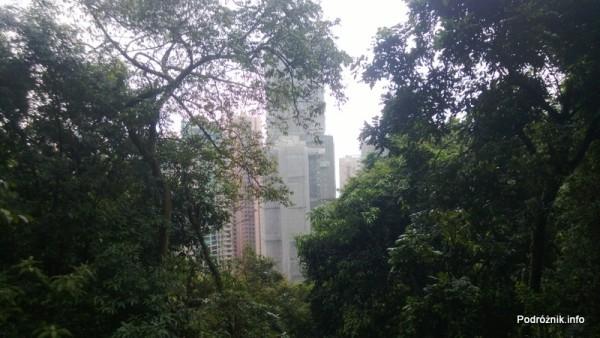 Chiny - Hongkong - Wzgórze Wiktorii - panorama miasta widziana podczas wchodzenia na The Peak - kwiecień 2013