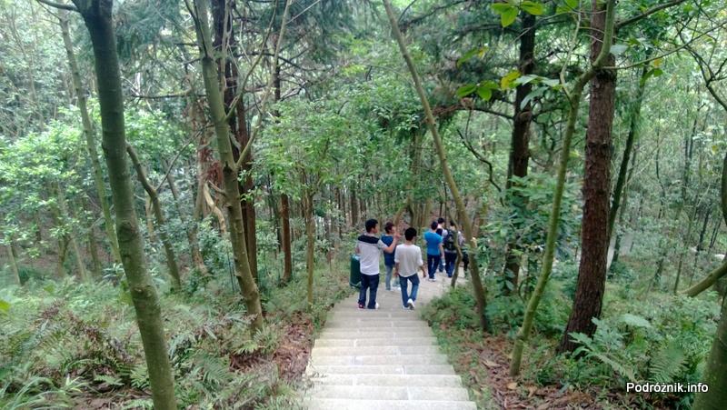 Chiny - Shenzhen - ogród botaniczny - schodzenie po schodach z góry - kwiecień 2013